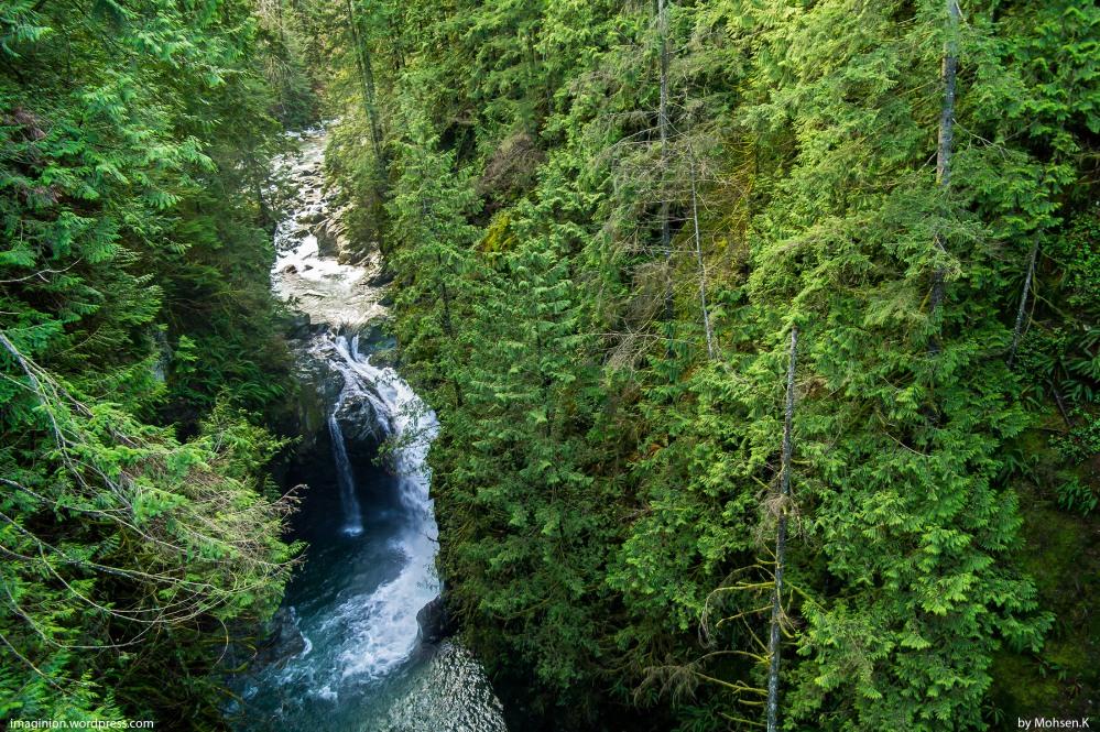 Lynn Valley