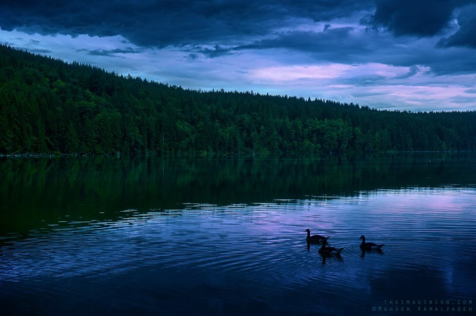 """All that we see or seem is but a dream within a dream.""  Shot at Hayward Lake in BC, Canada."